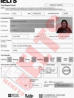 کارنامه آیلتس میترا پورغلام - معدل ۵.۵