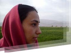 Ms Amiri